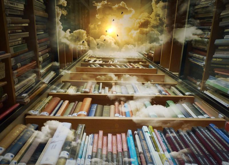 Une bibliothèque pleines de surprises !